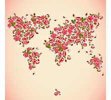 Pink Rose World Map Flower Plant Red Photographic Print