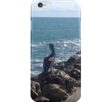Pelican on the Jetty iPhone Case/Skin