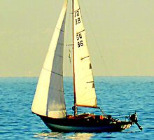 Sailing Boat by ©The Creative  Minds