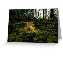 Yellow Chanterelle Mushroom Greeting Card
