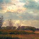 The Migration Season  by John Rivera