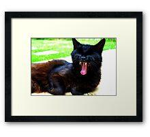 Cat Fangs Framed Print