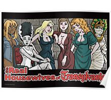Real Housewives of Transylvania Poster