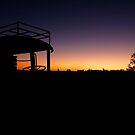 Outback  by STEPHANIE STENGEL | STELONATURE PHOTOGRAHY