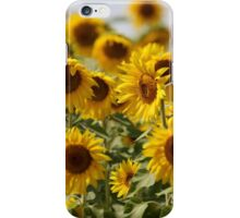 Sunflowers swaying in the wind close to iPhone Case/Skin