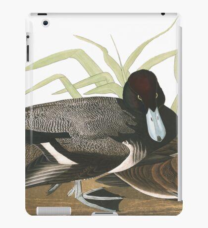 Lesser Scaup - John James Audubon iPad Case/Skin