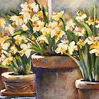 Sunshine on My Window Sill by Lynn  Abbott