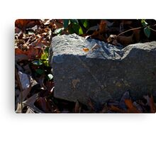 Marked in Stone Canvas Print