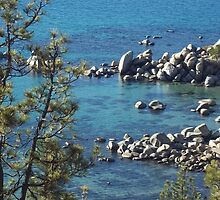 Private Cove at Lake Tahoe by KristinaL