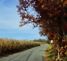 Meandering down a country road by vigor