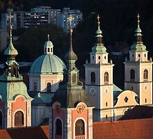 Ljubljana, Slovenia by Curtis Budden