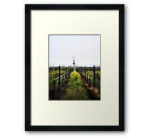 Winter Vineyards Framed Print