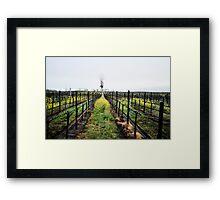Winter Vines Framed Print