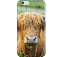 Highland Cattle, Scotland iPhone Case/Skin