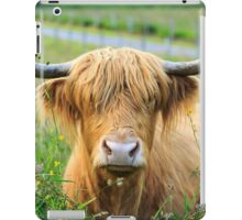 Highland Cattle, Scotland iPad Case/Skin
