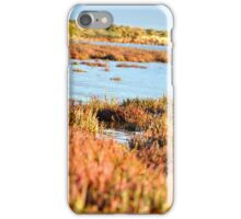 Coorong iPhone Case/Skin