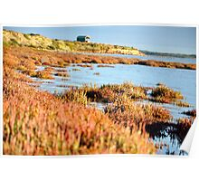 Coorong Poster