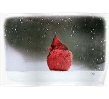 A Ruby In The Snow Poster