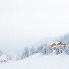 Colorado Winter Scene by Ryan Wright