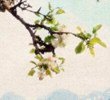 Apple Blossoms and Mountains  Sticker
