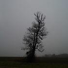 Leanin' Tree In The Fog by WildestArt