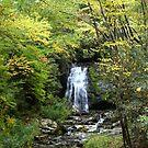 Meigs Falls by Asoka