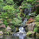 Oregon - Waterfall, Japanese Gardens Portland by Robert Baker