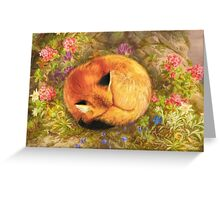 The Cozy Fox Greeting Card