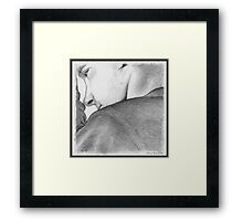 John Watson's Lament Framed Print