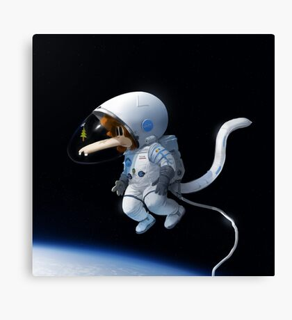 Tzika - space Canvas Print