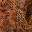 The wild and magic beauty of fishing nets ~ 13 by Rachel Veser
