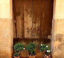 Three Pots  by Fara