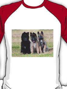 2015 Groenendael Tervueren & Lakenois babies T-Shirt