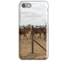 Some of the Herd iPhone Case/Skin