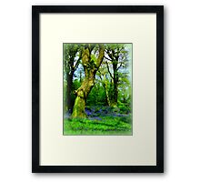 Fairy Playground Framed Print