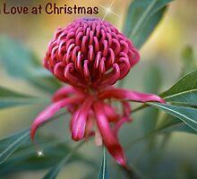 An Aussie Christmas Card by Dianne English