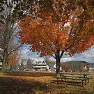 Autumn Picnic by RVogler