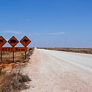 Nullarbor by Melissa Drummond
