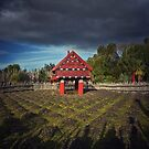 Warrior Shadows at the Polynesian Garden by Peter Kurdulija