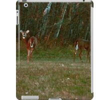 About A Boy And A Girl iPad Case/Skin
