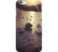 Snow in Central Park iPhone Case/Skin