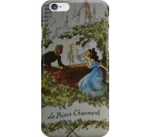 Daring sword fights, magic spells, a prince in disguise!  iPhone Case/Skin