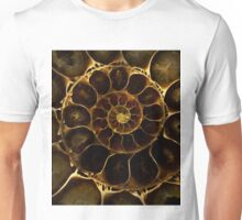 An Ancient Treasure VI Unisex T-Shirt