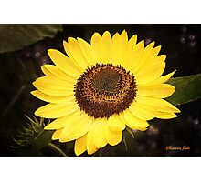 Sunflower ~ Your Dose of Sunshine Photographic Print