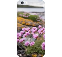 Mull Thrift iPhone Case/Skin