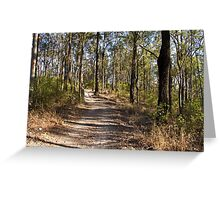 The meandering forest trail Greeting Card