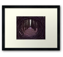 Forest Portal Framed Print