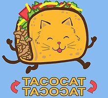 Tacocat (Blue) by kirbeekatz