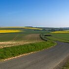 The winding road by Jim Hellier