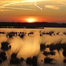 Sunset - Fochteloerveen by ienemien